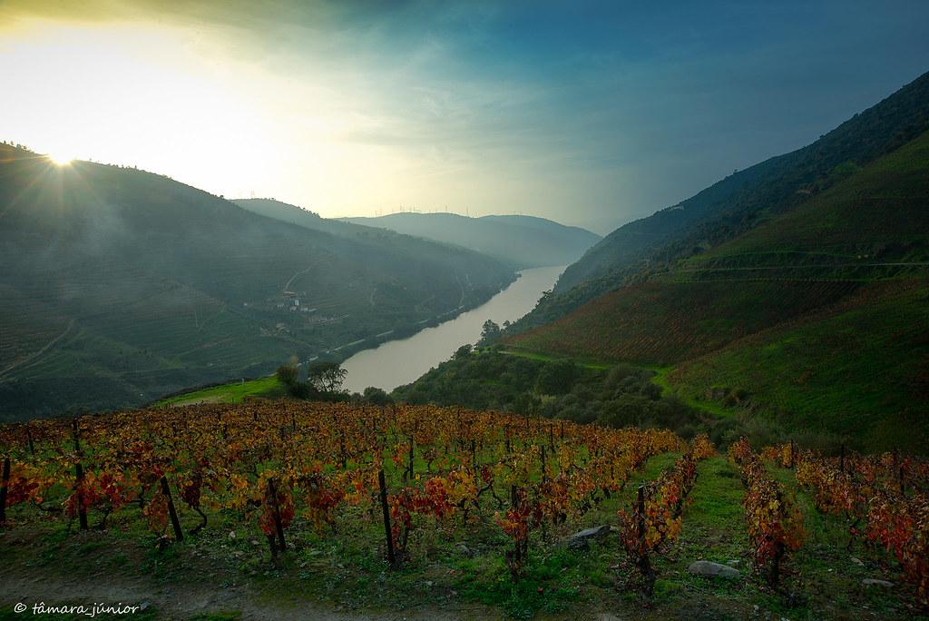 23.- 2015 - Outono no Douro Vinhateiro IIII (449)