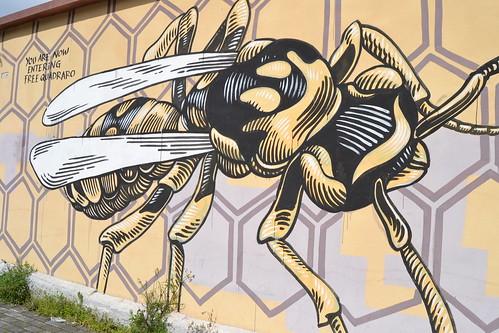 Quadraro (Roma) Graffitis MURO (1)