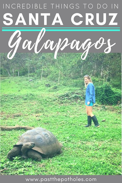 Claire in a field with a tortoise and text: Incredible Things to do in Santa Cruz, Galapagos