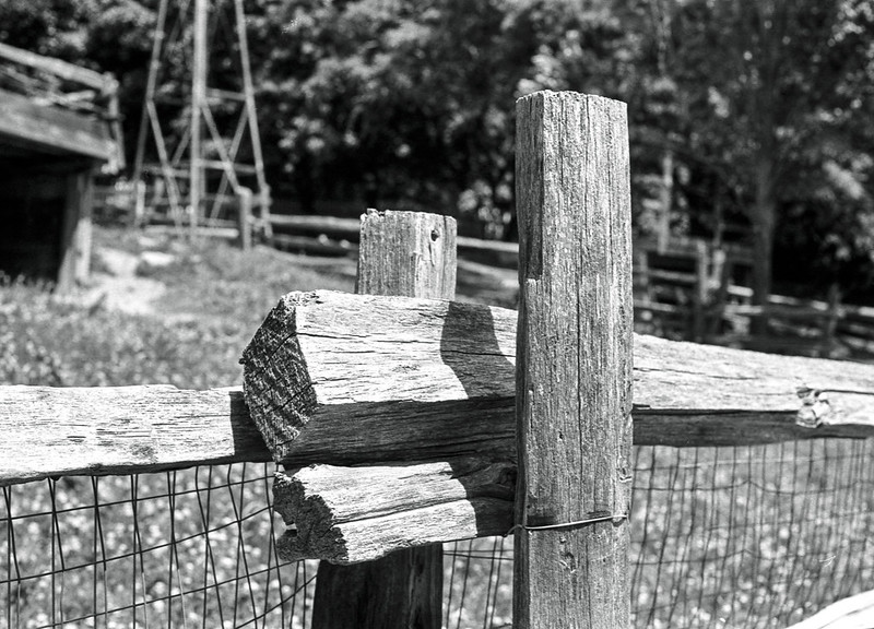 The Riverdale Farm Fenceposts