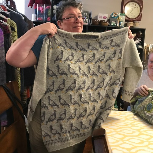 Front view of Sandi's Birds and Bikes test knit