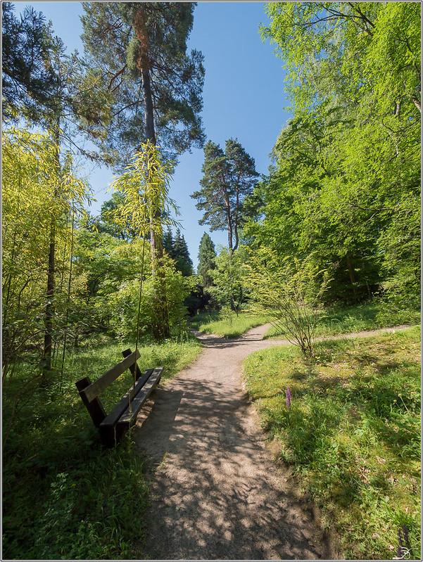 Jardin botanique Saverne: le jardin 43040186652_b5b81d55d1_c