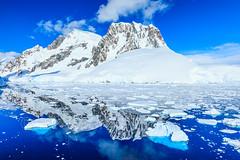 Antarctica-111124-981