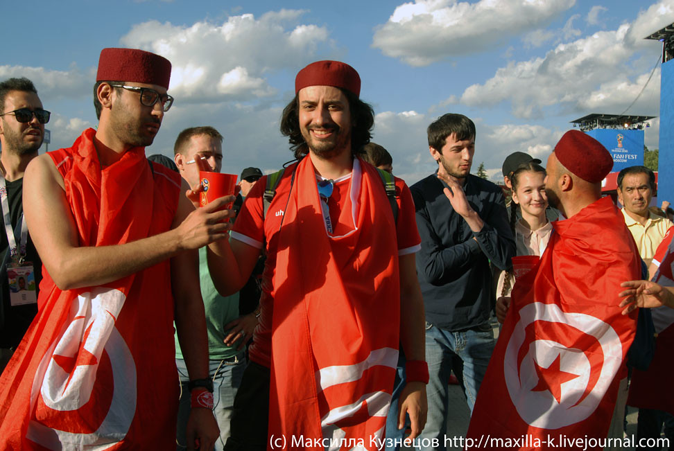 Tunisian soccer fans