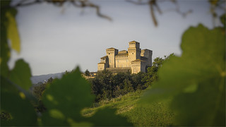_DSC7233 Torrechiara, Emilia-Romagna / Italia