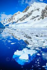 Antarctica-111124-983