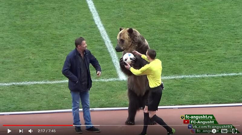 Пятигорский медведь и медведь Студии Лебедева