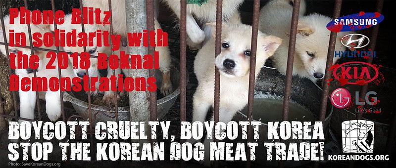 Join us from your home! Phone Blitz in solidarity with the 2018 Boknal Demonstrations in New York and Seattle