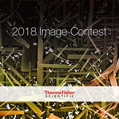 2018 EM Image Contest