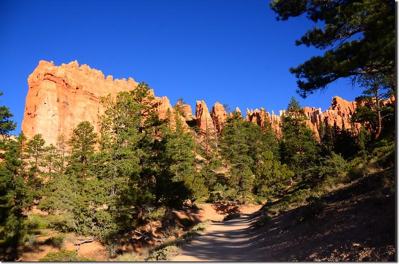 Queens Navajo Combination Loop,Bryce Canyon (11)