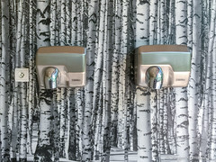 Toilet in the wood