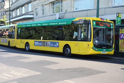 Yellow Buses 9 R9TYB