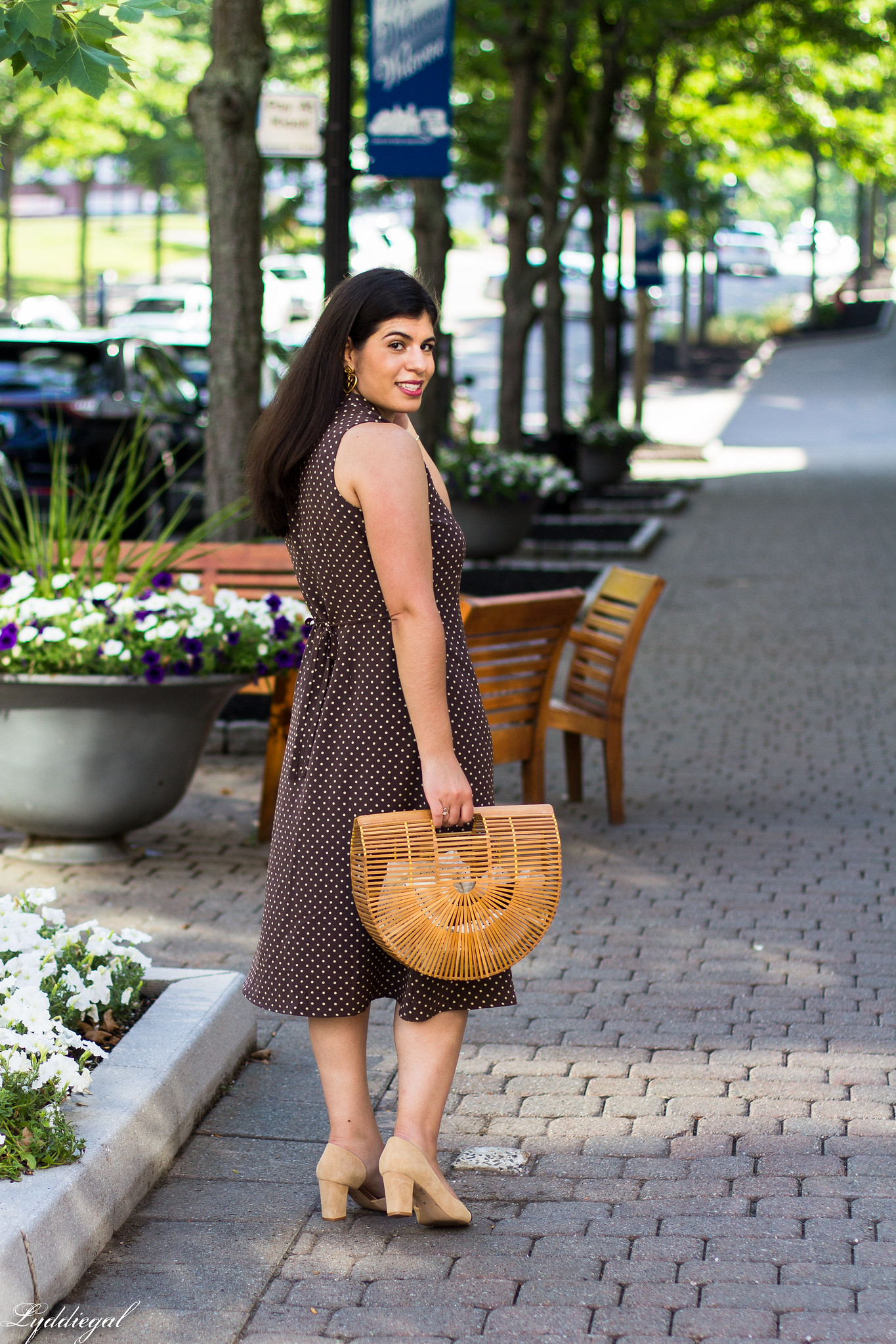 Brown polka dot midi dress, toe cap heels, bamboo bag-6.jpg