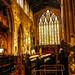 A Golden 'Heavenly Glow'? ZOOM as a bit dark in thumbnail