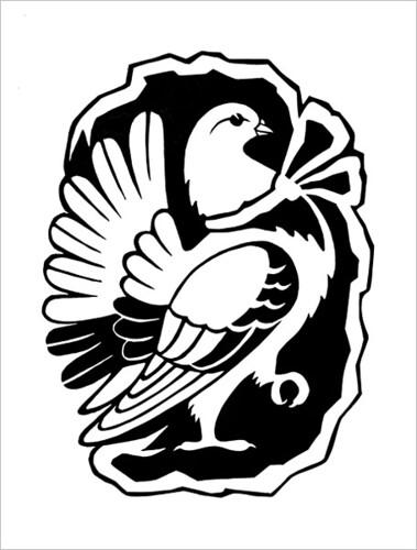 Pigeon / Голубь