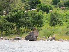 Northern shore Lake Malawi