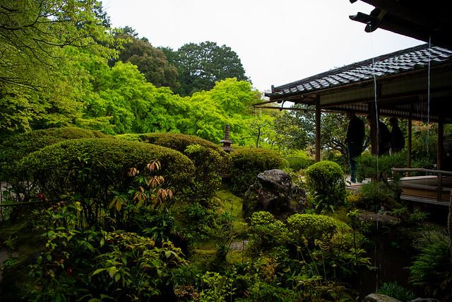 kyoto2017spring-22