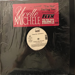 YVETTE MICHELE:I'M NOT FEELING YOU(JACKET A)