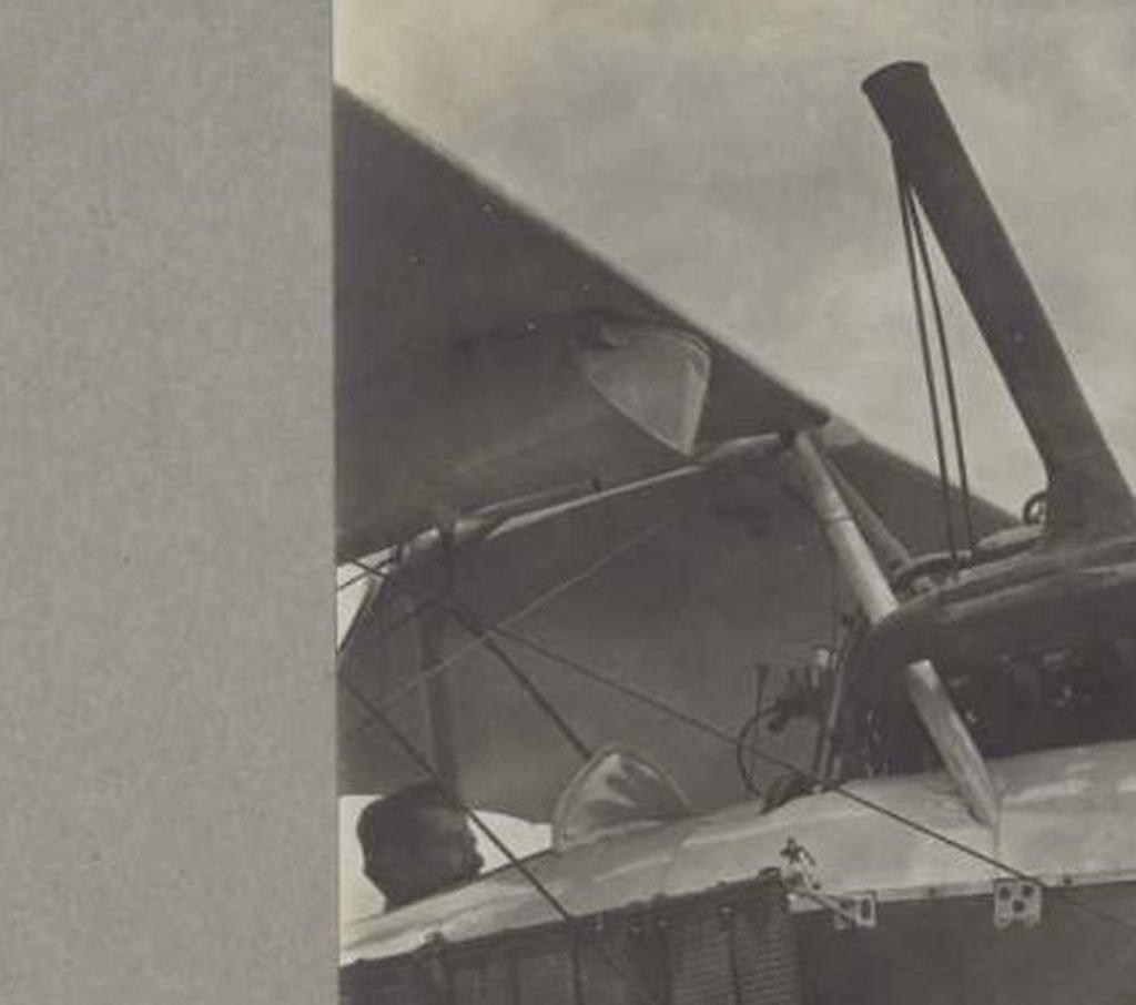 1/48 Albatros C. III   Crocodile et Dragon 41745580320_7e2e7297d1_b