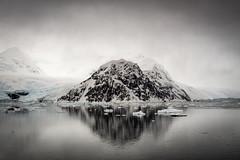 tranquility of antarctica