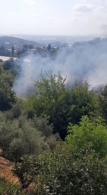 Elikesik'te yangın çıktı