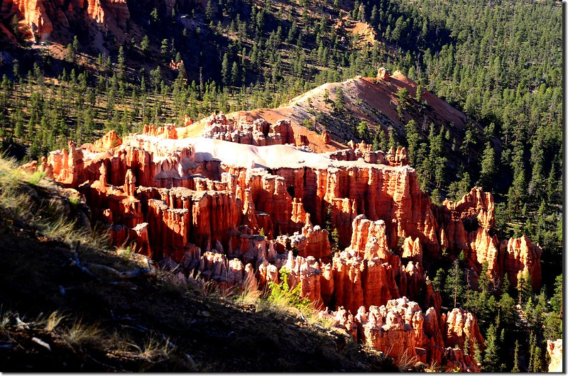 Bryce Point, Bryce Canyon (1)