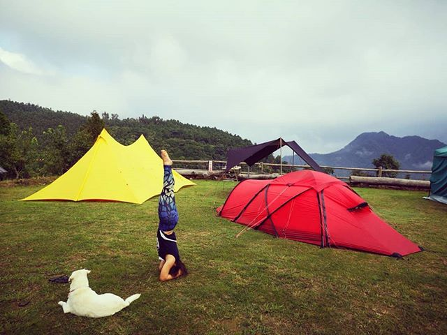 20180721 早安 #一露一倒立 #歐北露 #iloveheadstands #ilovecamping #campingheadstand #kopfstand #soulwhatpetit #hillebergsaitaris #campingwithdogs