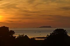Ile Rouzic just before sunset