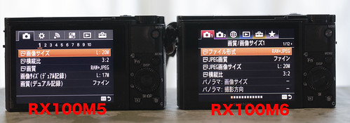 RX100M5 vs RX100M6_10