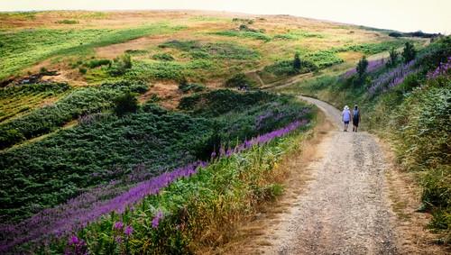 Malvern Hills - Ann and Monica on the track