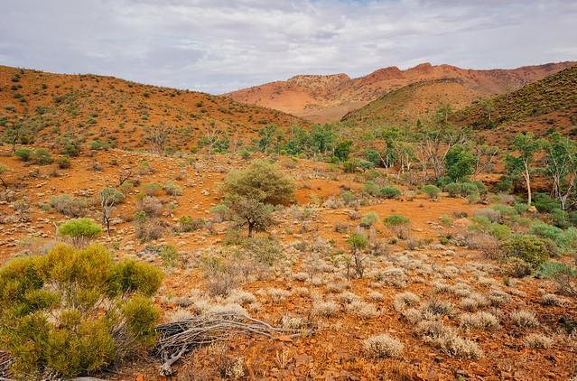 The Flinders Ranges., Nikon D610, AF Nikkor 28mm f/2.8D