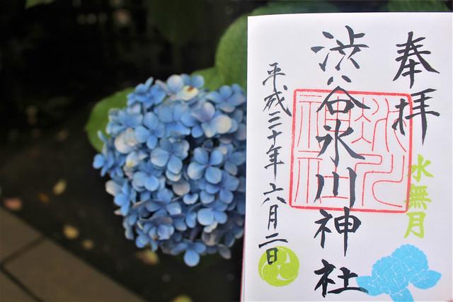 shibuyahikawa-gosyuin007