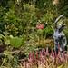 Lower Crawshaw, Open Garden