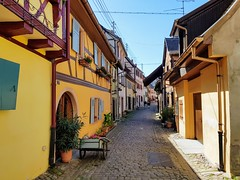 20180507_155756 - Photo of Biltzheim