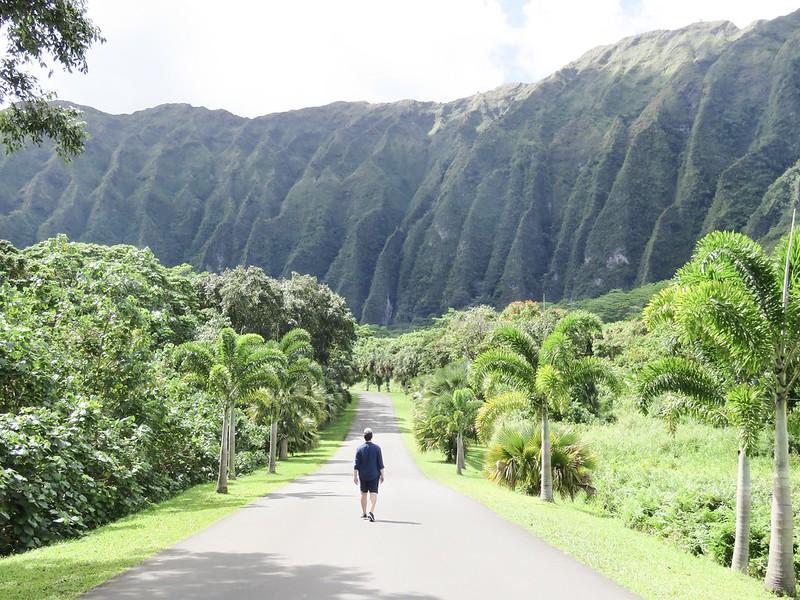 Hawaii Jardin botánico Hoomaluhia 2