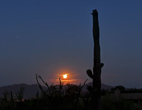 Strawberry Moonset and Saturn in the breaking dawn in Tucson AZ