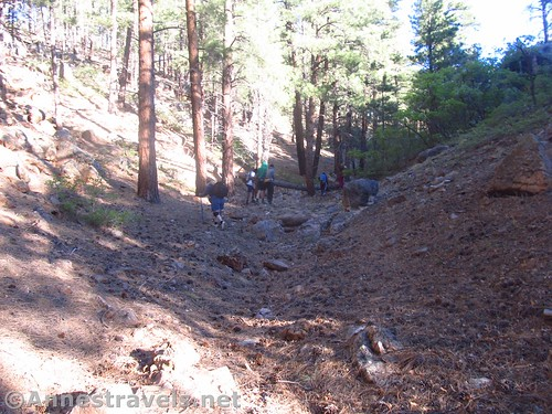 Hiking up the second drainage en route to Honan Point on the North Rim of Grand Canyon National Park, Arizona