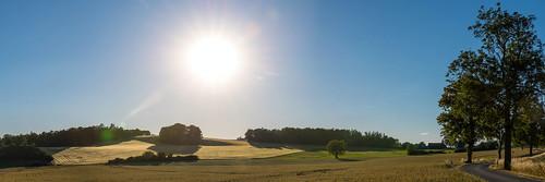 Short before sunset - Saxonia, Germany