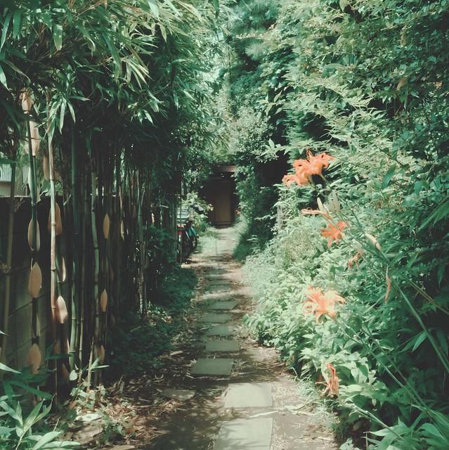 Narrow entrance lane