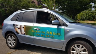 "Jeonju is going ""Dog Meat Free""."