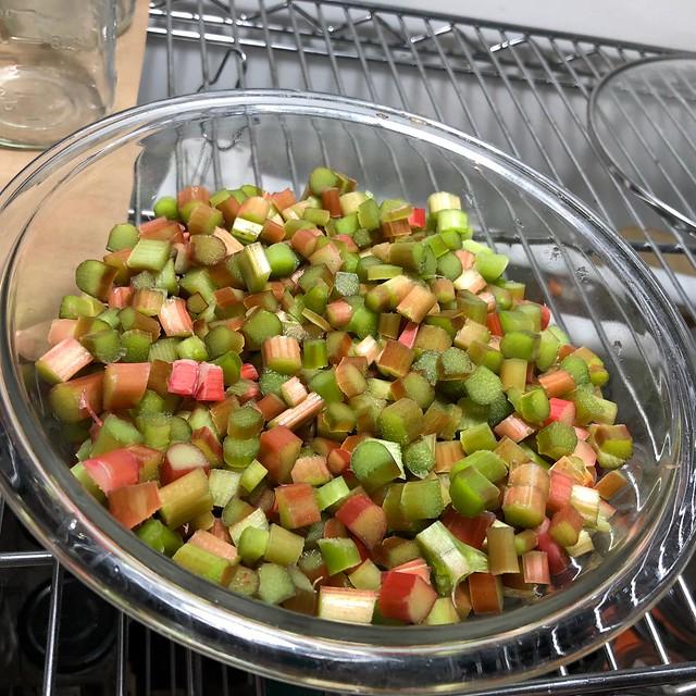 One last harvest of rhubarb