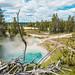 Grand Prismatic Springs-13.jpg by VoxLive