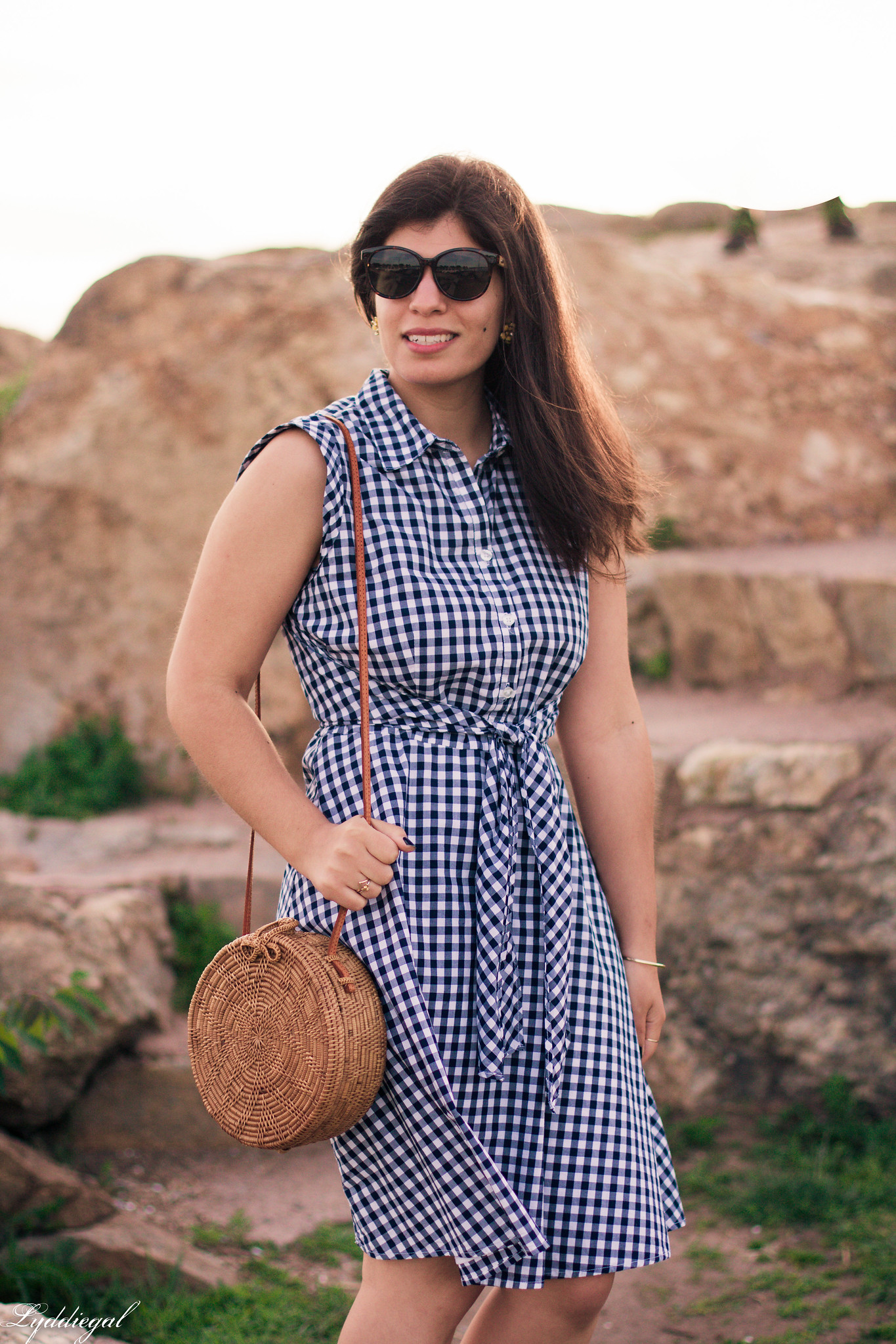 Gingham Dress, Round Straw Bag, Jeweled Sandals-2.jpg