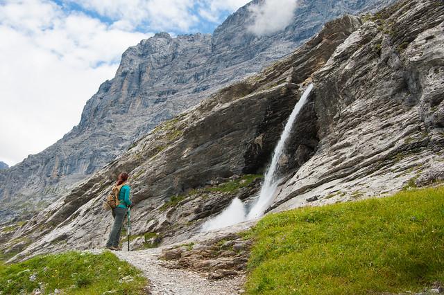 Trailside Waterfall
