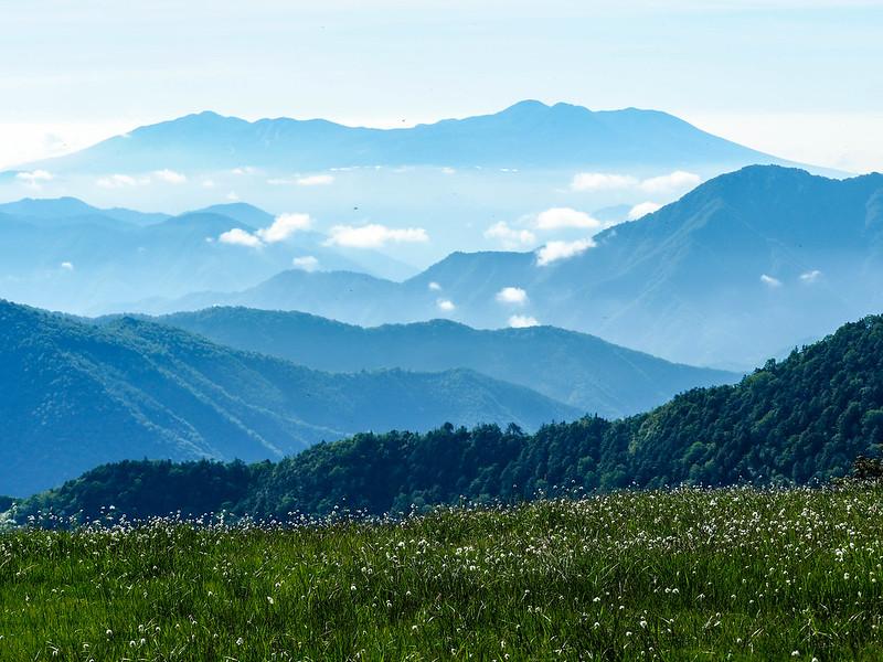 広大な田代山の湿原