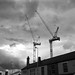 Tower Cranes_Hales Street_Coventry_Jul16