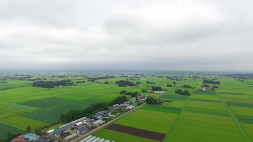 agriculturalheritage giahsgloballyimportantagricultureheritagesystemsjapan