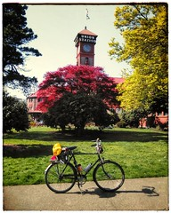 I never tire of this shot! #unionstationpdx