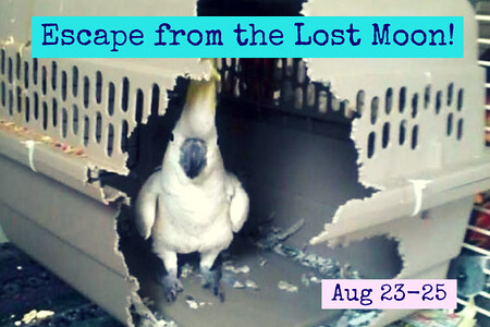 Escape from the Lost Moon!_SMALL