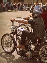Harley Dave...